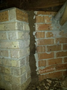 Termite Entry Point