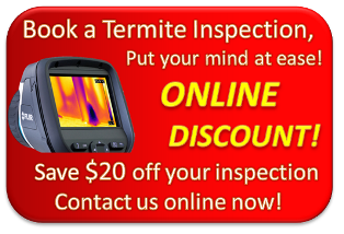 Book a Termite Inspection Online and Save $20