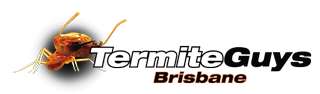 Termite Detection & Treatment - Brisbane & Bayside