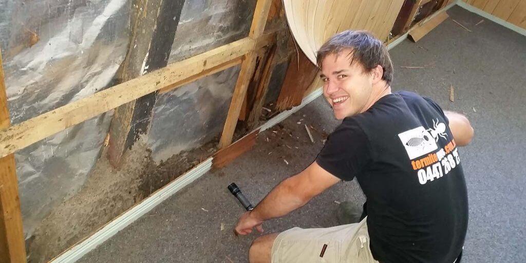 Termite Guys Brisbane -licensed termite control in action - nestinwall2-1024x512