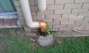 Termite Guys Brisbane - termites can cause water leakage
